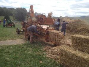 Fall Harvest Fair - Saturday @ Alexander Schaeffer Farm